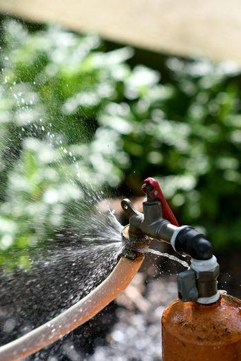 tap leaking water Liquid H2o_natura Water Tap Clean Water Leaking Water Leaking Pipe Leaking Tap Gardening Water Spraying Day Focus On Foreground The Architect - 2018 EyeEm Awards
