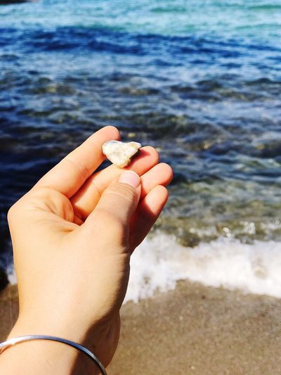 Close-up of hand holding sea shore
