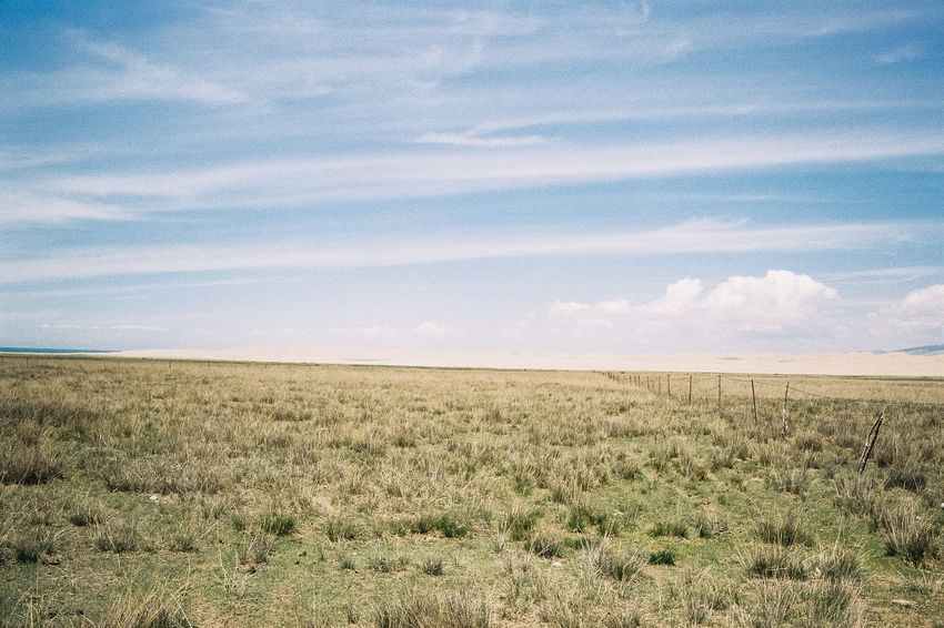 Landscape Field Sky Nature Grass Growth Scenics Cloud - Sky Tranquil Scene No People Beauty In Nature Tranquility Day Outdoors