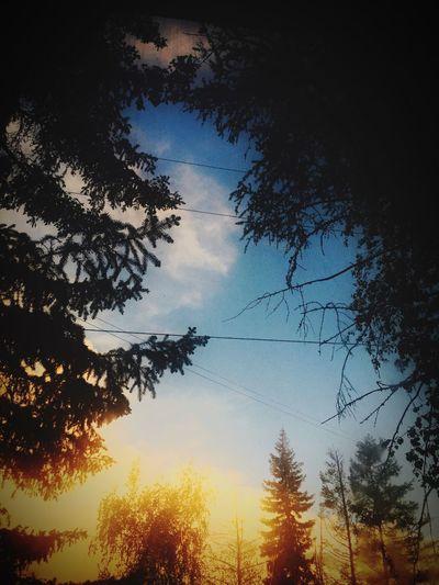Cloud Nature Morning Dawn Dawn Yakutsk