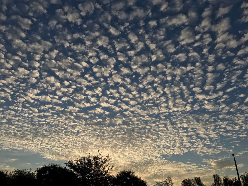 Nature Sunset Low Angle View Dramatic Sky Sky No People Cloud - Sky Outdoors Beauty In Nature Budapest Hungary PalaPhoto Cloud Clouds And Sky Sheepclouds