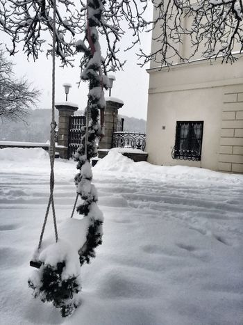 Snow Swing Castle