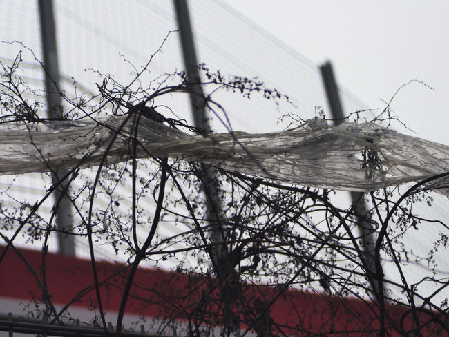 Absperrgitter Absperrung Backgrounds Barbed Wire Entrance Escape Escape From The City Immigration Nato Drahj Neubau