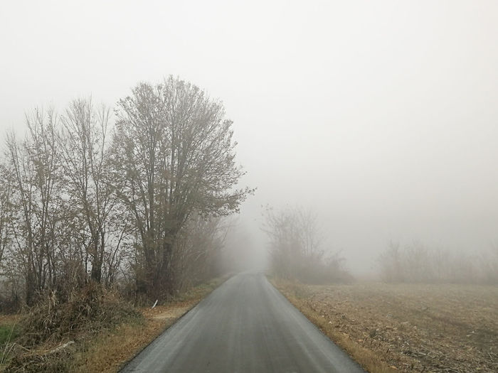 Foggy day Foggy Countryside Tree Fog Winter Road Cold Temperature Weather Sky Landscape