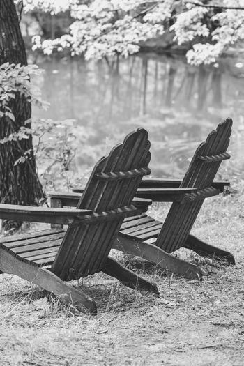 Empty adirondack chairs by pond in forest