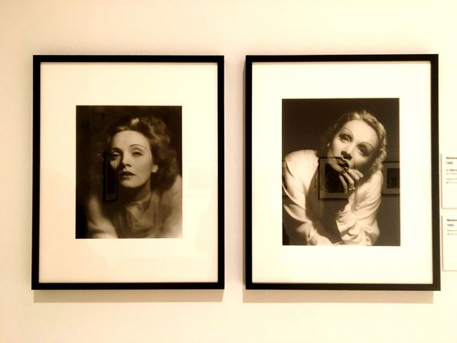 Marlene Dietrich- Picture Frame Evanescente ed eterea Photograph Close-up