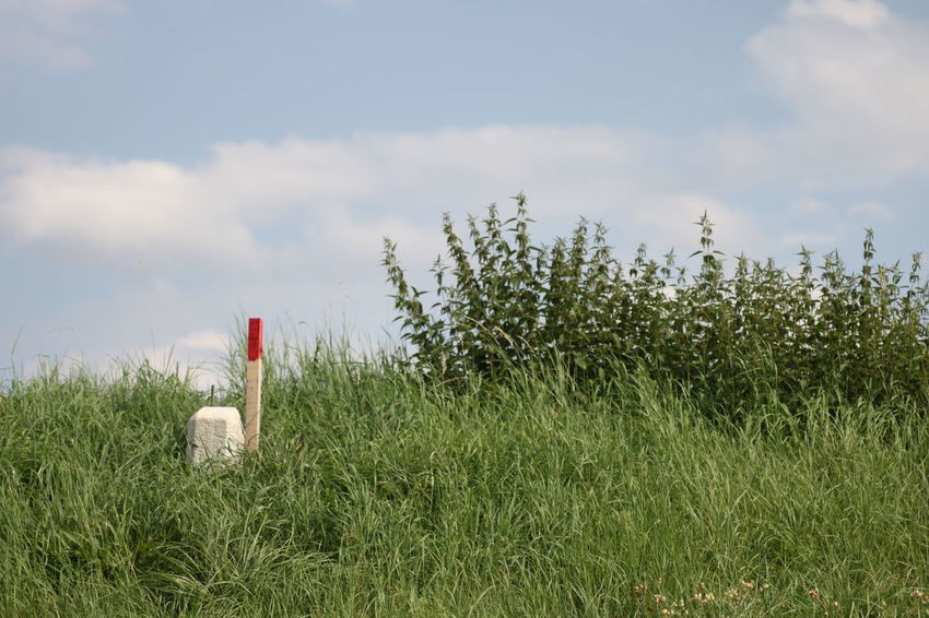 Cloud - Sky Day Grass Growth Landmark Nature No People Outdoors Sky Stinging Nettles