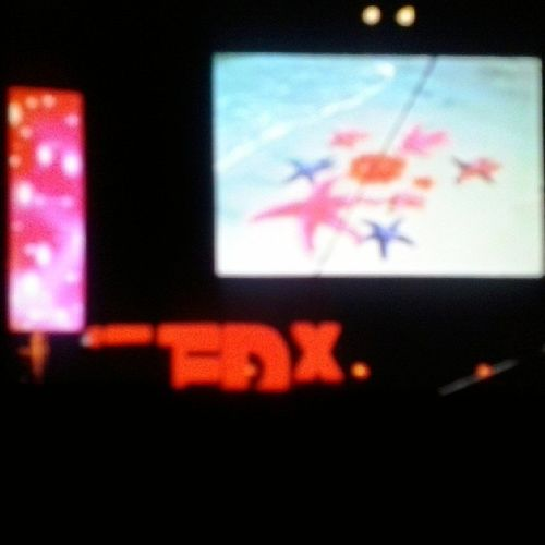 TedxCarthage Rethink_life The_tunisian_brand Star_fish_story by Amel Karboul