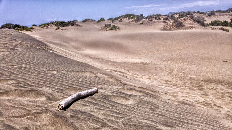 Sand Nature Outdoors No People Sand Dune Day Dunes Dominican Republic Tourism Desolate Warm Explore Stick Focus Object