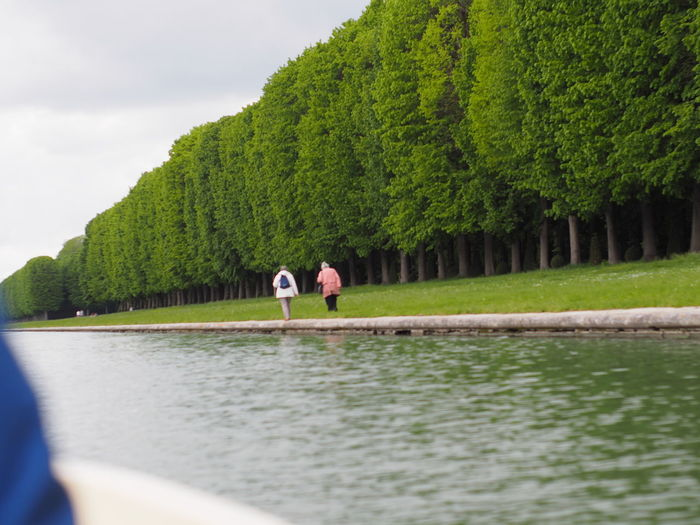 People by lake against trees