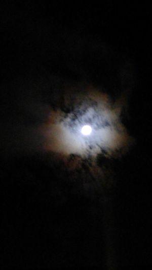 Night Moon Low