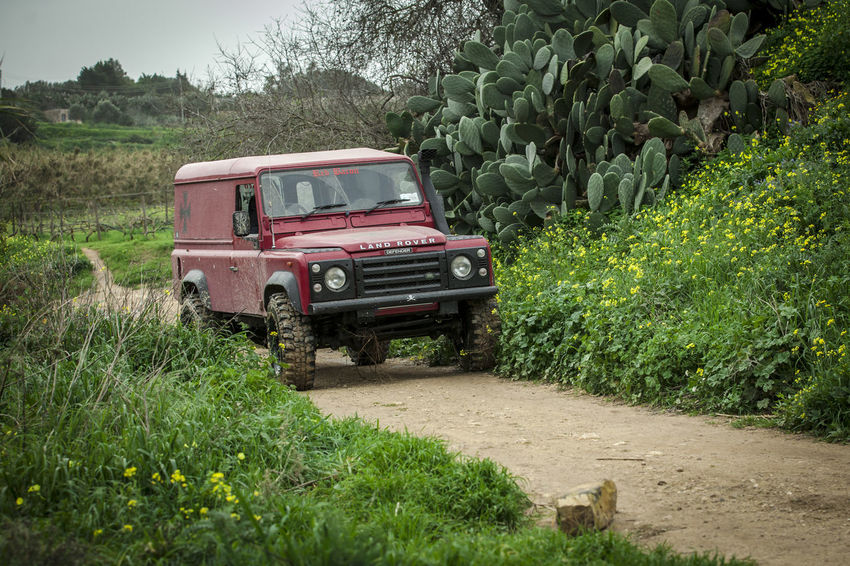 Defender 110 Adventures 110 Expedition Land Rover Off-Road Adventure Agriculture Day Defender 110 Field Growth Land Rover Defender Land Vehicle Landrover  Landy Mode Of Transport Nature No People Off-road Vehicle Off-roading Offroad Offroading Outdoors Plant Rural Scene Transportation Tree Trek