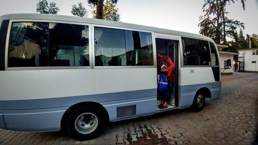 bus Bus