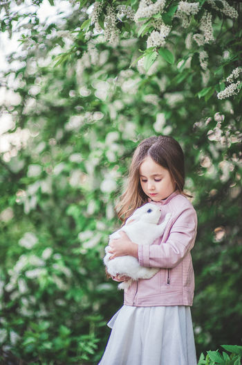 Cute little girl with white rabbit in white dress early spring may in cherry blossom White Rabbit Rabbit Rabbit - Animal Little Girl Girl Princess Mammal Cherry Blossom Spring Springtime Spring Flowers Pet Pet Photography  Friendship Outdoors Long Hair Girls Hairstyle Pink Jacket