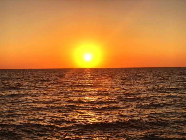 Oh so bright! So beautiful! Sunset Sea Sun Beauty In Nature Scenics Orange Color Nature Water Silhouette No People Dramatic Sky Tranquility Outdoors Sunlight Horizon Over Water Reflection Tranquil Scene Idyllic Sky Majestic
