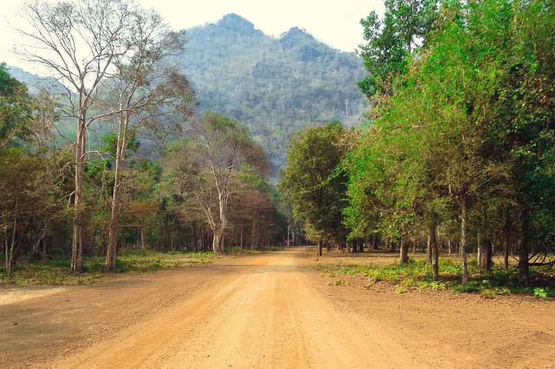Beauty In Nature Day Growth Landscape Laos Lush - Description Mountain Nature No People Outdoors Road Scenics Sky The Way Forward Tranquil Scene Tranquility Tree