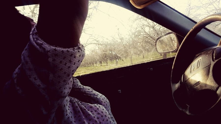 Car Window Car