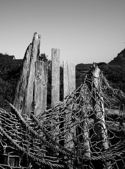 fishing net hangs on old wood on Usedom, Germany Fishing Net Black And White Blackandwhite Clear Sky Day Detail Fisherman Low Angle View Nature Net No People Outdoors Sky Usedom