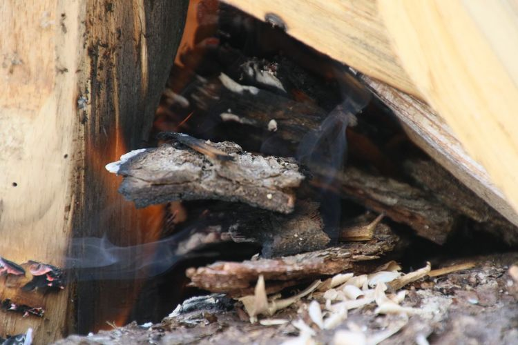 Close-up of burning wood in bonfire