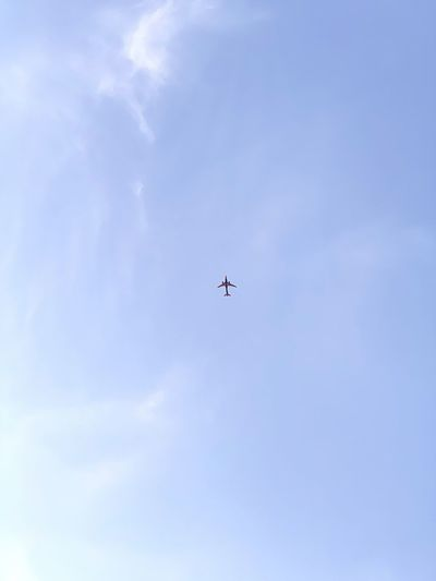 Low Angle View Sky Flying Blue Cloud - Sky Nature No People Airplane Transportation Day Mode Of Transportation Motion