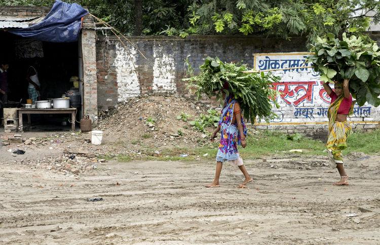 Bihari villagers carrying crops Bihar India Farmers Poverty Roadside Village Village Life Working Women