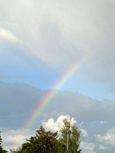 Rainbow good