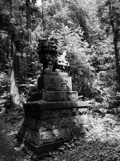 狛犬 戸隠 戸隠神社
