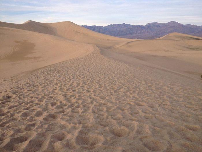 Scenic view of desert