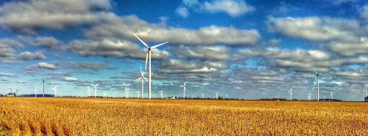 Harvesting the wind..