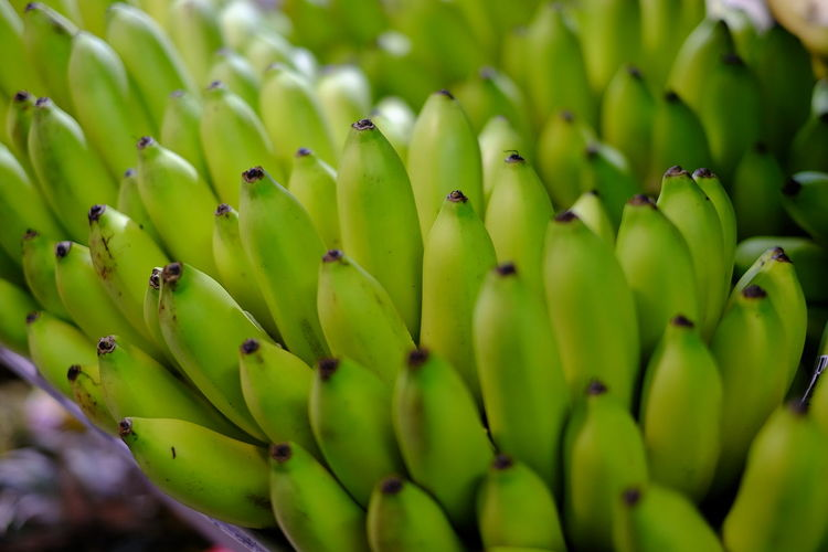 Close-up of bananas at market for sale