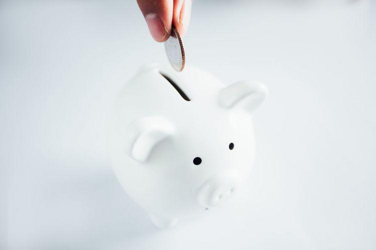 Bank Piggy
