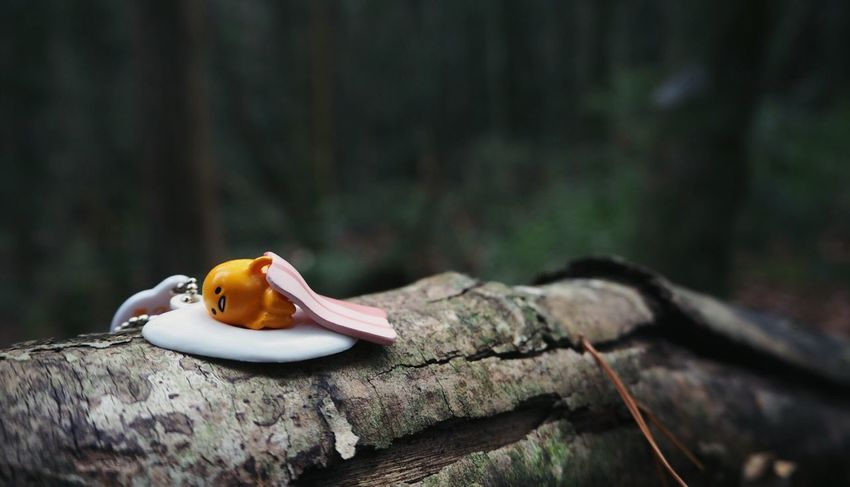 Gudetama Egg Cartoon Cute Character Forest Japan Nature Landscape_Collection Japanese  Check This Out