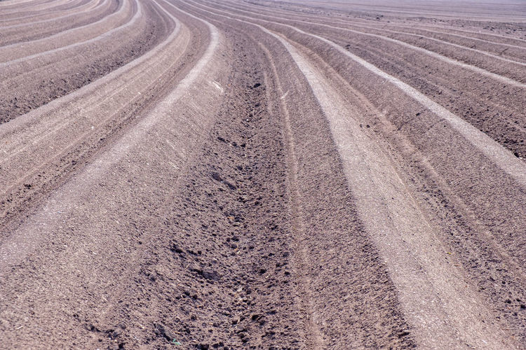 High angle view of tire tracks on road