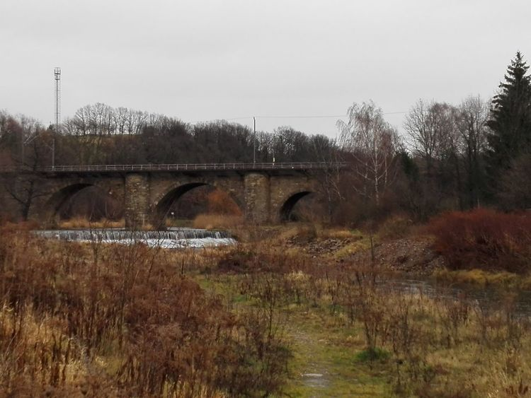 Freiberger Mulde Water Bridge - Man Made Structure No People Outdoors Tree Day Winter Nature Grass Sky
