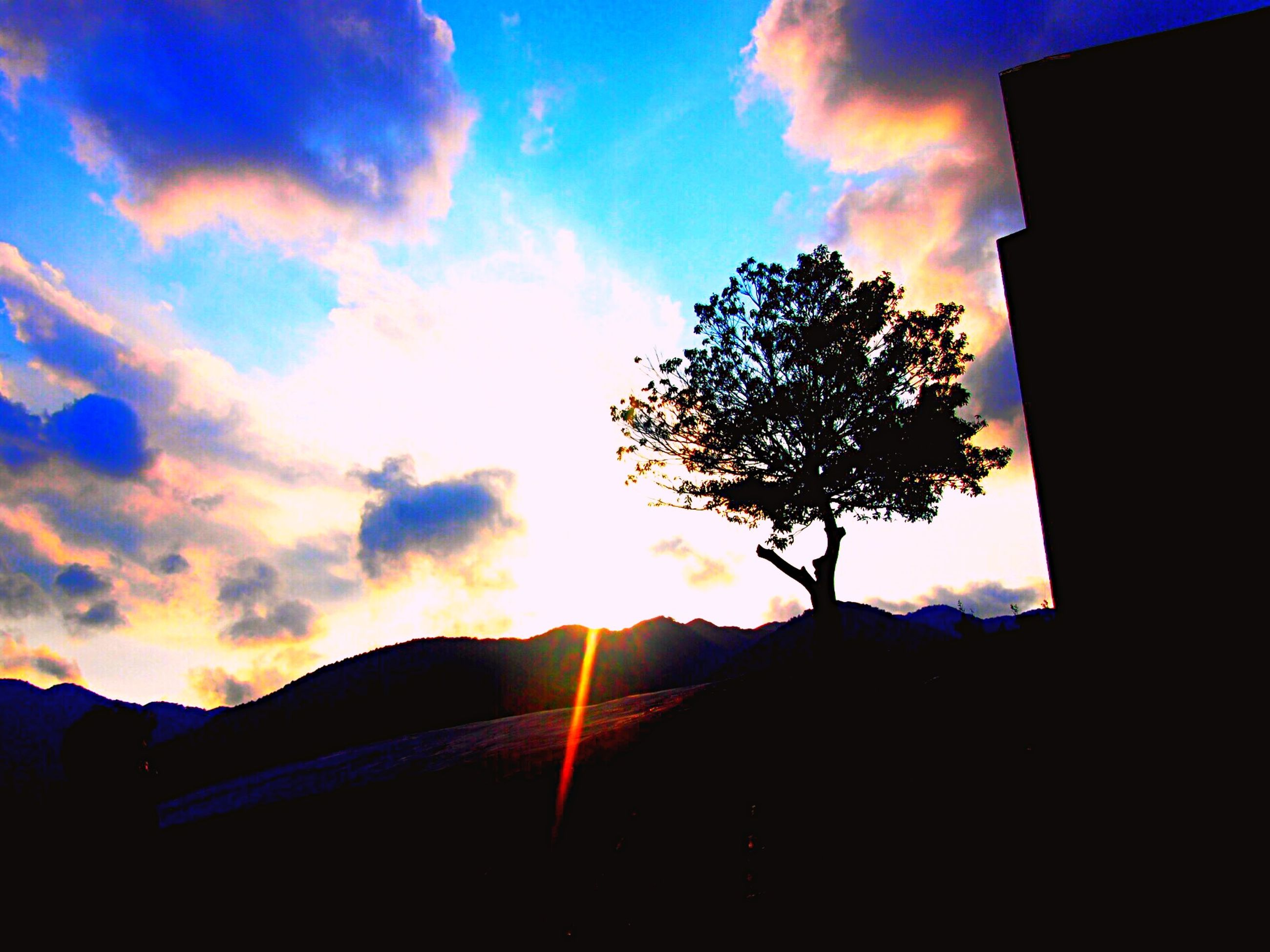 silhouette, sunset, sky, sun, tree, cloud - sky, beauty in nature, scenics, tranquility, built structure, low angle view, cloud, sunlight, tranquil scene, nature, building exterior, architecture, dark, back lit, outline