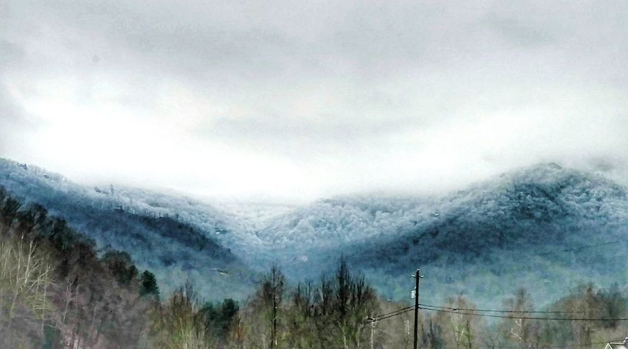 Snow in the Smokey Mountains in the Morning! EyeEm Gallery EyeEm Nature Lover Cell Phone Photography Cold Temperature Winter Weather Nature No People Beauty In Nature Snow Outdoors Day Tree Scenics Sky Tranquility Mountain Shades Of Winter