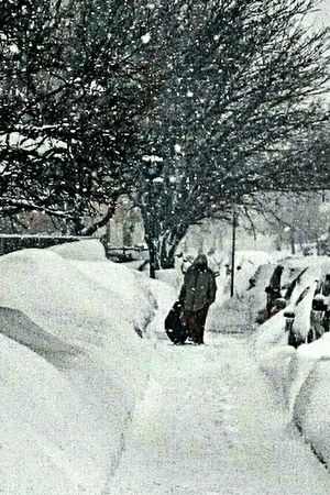 Blizard Blizzard 2015 Boston Snow америка снег снегопад Бостон