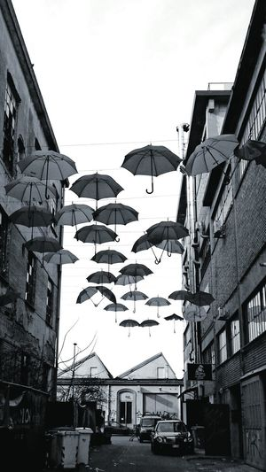 Bkack And White Black And White Photography Street Photography Streetphoto_bw Umbrellas Flying Umbrellas Art Installation