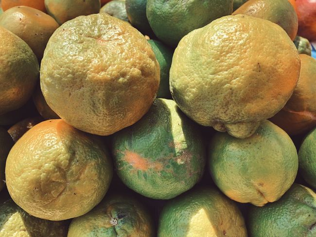 Oranges 🍊 Fruit Healthy Eating Food And Drink Food Freshness Citrus Fruit No People Full Frame Large Group Of Objects Day Backgrounds Close-up Outdoors