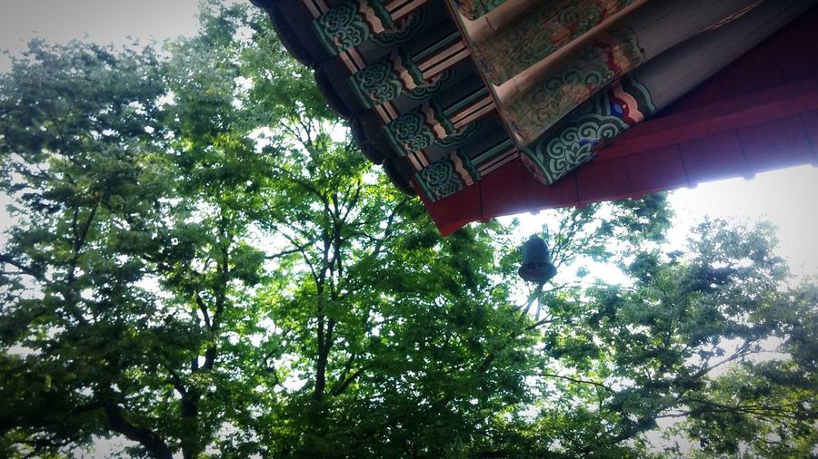 Old But Awesome 절 대한민국 Korea Temple