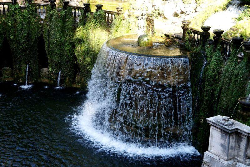 Waterfall Grass
