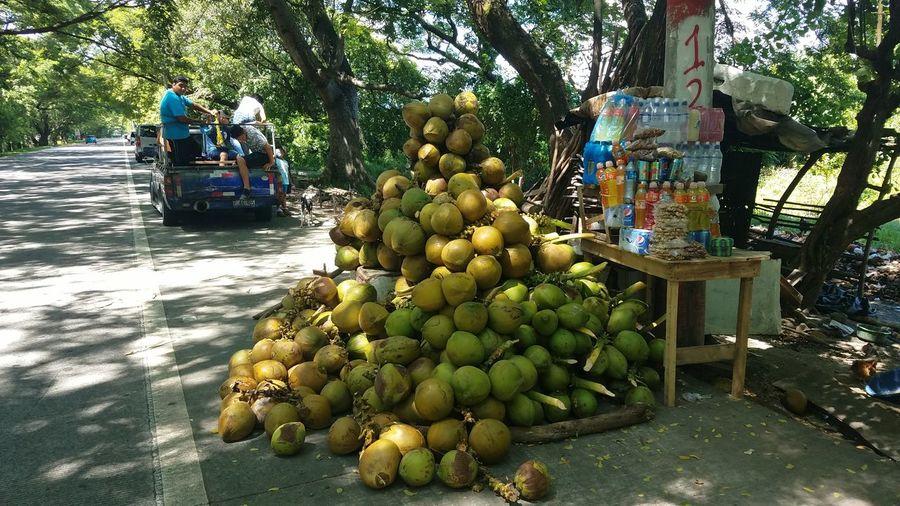 Cocos frescos Elsalvadorimpresionante
