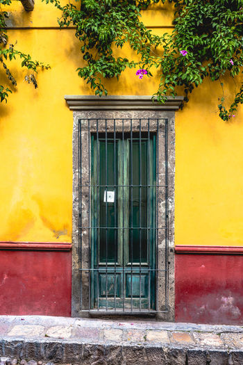 Pattern, Texture, Shape And Form Pattern Abstract Abstract Photography Door San Miguel De Allende Mexico Colorful Colors Geometric Shapes Streetphotography Street Photography Magic Moments Built Structure Architecture Building Exterior No People Day Outdoors Building Yellow House Entrance Window Closed Plant Residential District Flower Growth Flowering Plant Wall Nature Window Frame