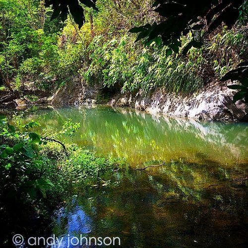 River Islandlivity Islandlife Ilivewhereyouvacation Shutterbug_collective Stunning_shot Shootergram Grenada GOLDENCLiCKS Westindies_landscape Iphone5s Theblueislands