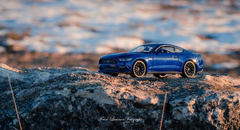 Miniature Ford Mustang Ford Car Land Vehicle Transportation Mode Of Transport No People Toy Car Day Outdoors Nature