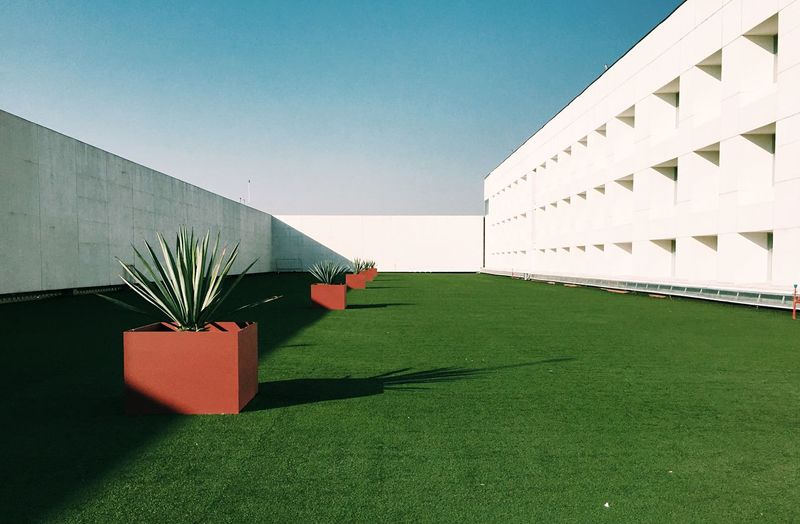 SURREALISTIC Mexico City Artificial Minimalist Architecture Minimalism Simplicity Brutalism Modernism Built Structure Building Exterior Architecture Nature Sky Plant Day Sunlight No People Clear Sky Building Green Color Shadow Outdoors Lawn
