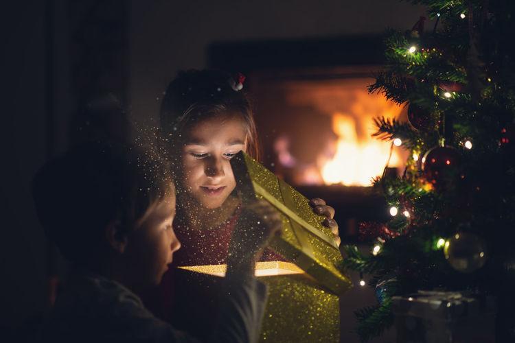 Portrait of illuminated christmas tree at home