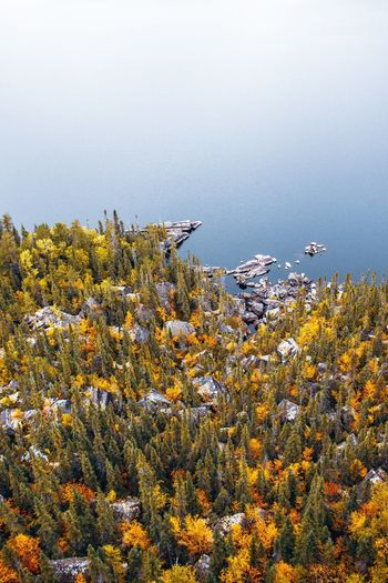 On top of Cap à l'Aigle! Aerial View Aerial Shot Drone  Dronephotography From Above  Above Tree Hike Landscape Lake No Sky Blue Waterfront Fall Beauty Fall Rocks Water Flower Sea Close-up Sky Tranquil Scene