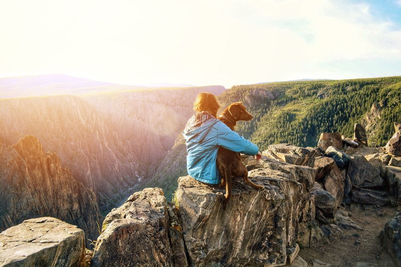 Can't beat that feeling Sunrise Adventure Outdoors Canyon Black Canyon Black Canyon Of The Gunnison Colorado Dog Love Hiking Colour Of Life
