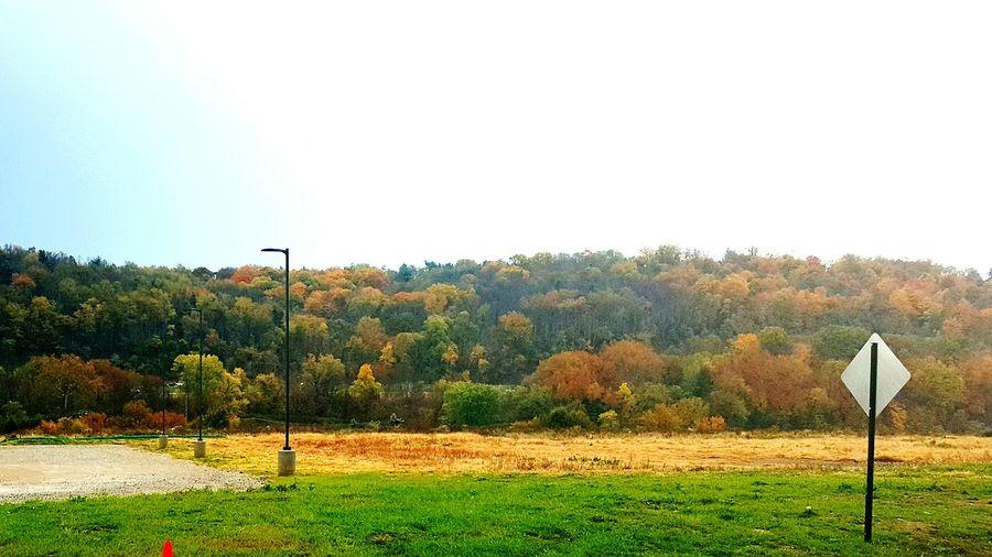 Fall Colors Autumn Colors